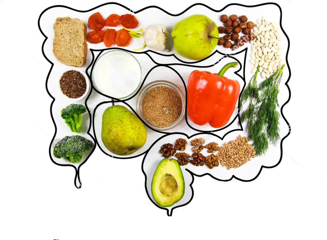 腸と身体の意外な関係とは?食歴と生活習慣が大切