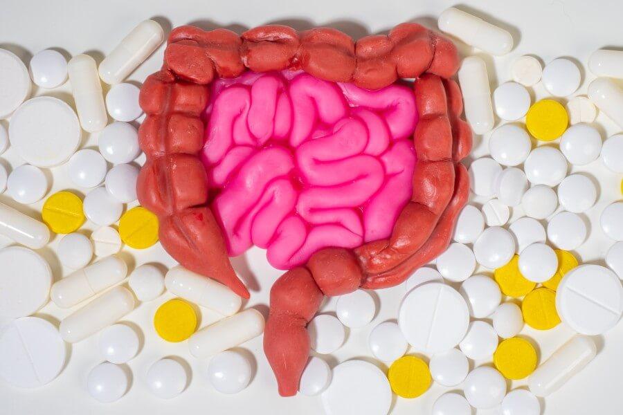腸内細菌とは?腸内環境の改善方法をご紹介!