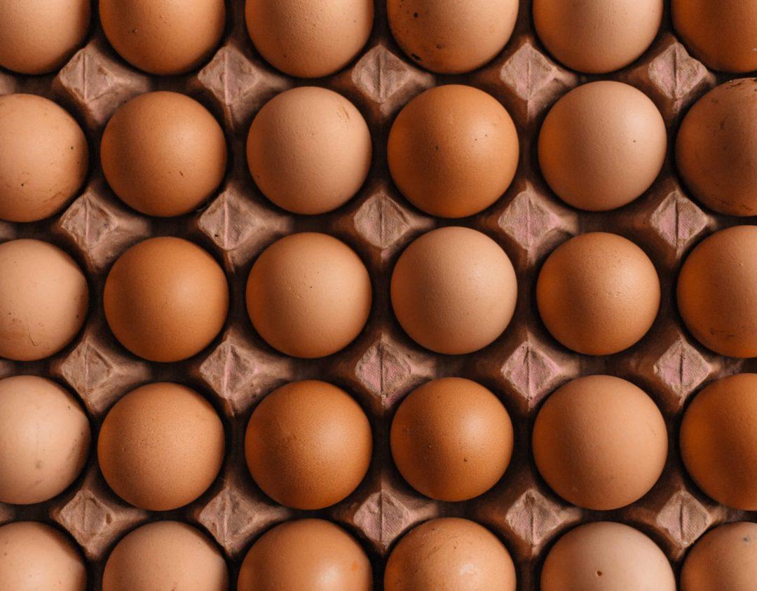 卵などのたんぱく質がアレルギーの原因になる理由を解説!