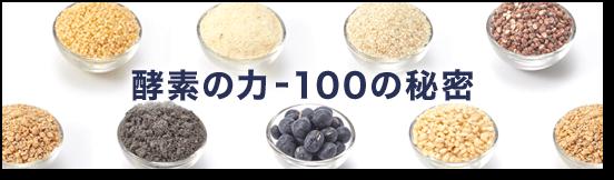 酵素の力-100の秘密